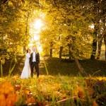 Hochzeitfotos Hanseatic Goehren
